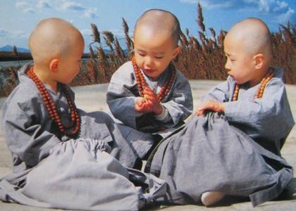 看了这个,感觉创立佛教的果然是牛人!